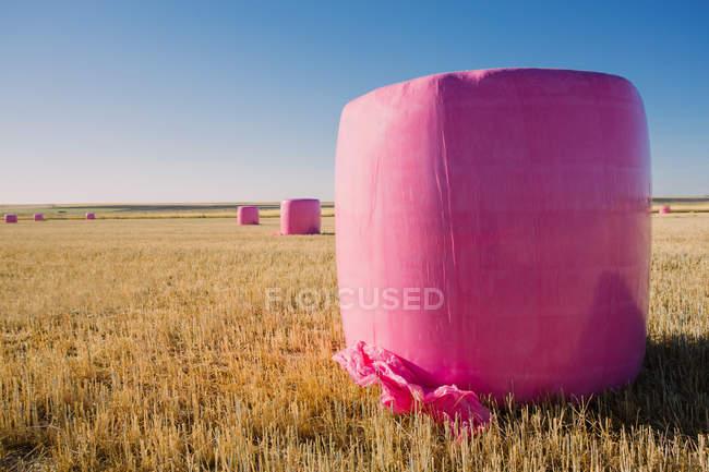 Зерновые тюки, завернутые с розовым пластиком, кампания против рака молочной железы — стоковое фото