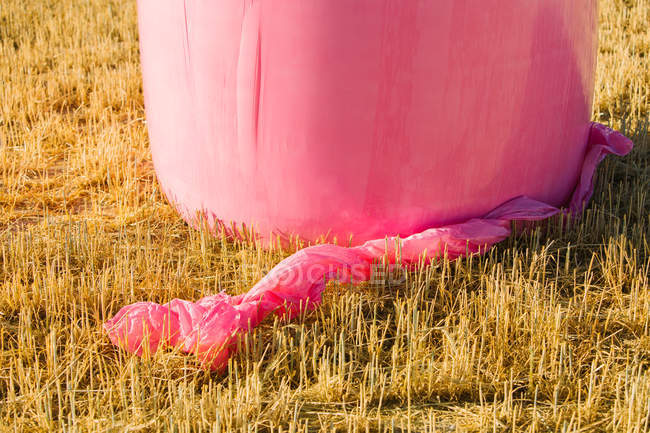 Крупным планом зерновых тюков, завернутый с розовым пластиком, кампания против рака молочной железы — стоковое фото