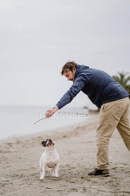 Side view of adult man with stick playing with obedient French Bulldog while spending time on sandy shore near sea — Stock Photo