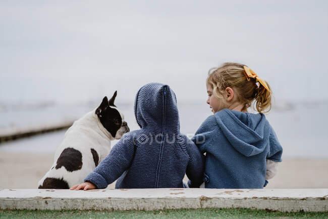 Задний вид на двух детей, обнимающих французский бульдог, сидящих на пляже рядом с морем вместе — стоковое фото