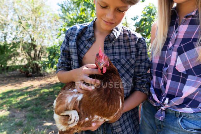 Jeune garçon et fille en chemises à carreaux et shorts en denim souriant et caressant poule tout en se tenant près des buissons verts par une journée ensoleillée à la ferme — Photo de stock