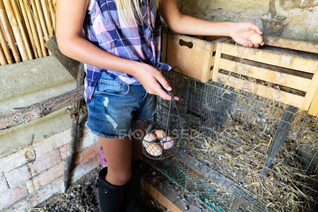 Anonymous teen girl in checkered shirt and denim shorts picking fresh chicken eggs from nest in shed while helping with chores on farm — Stock Photo