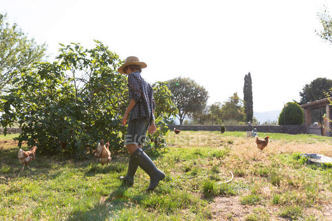 Side view of unrecognizable male teenager in straw hat and high boots walking on lawn near bush while taking care of hens on sunny day on farm — Stock Photo