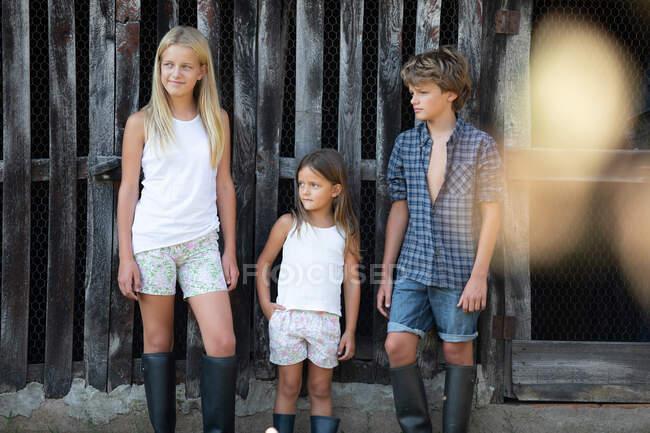 Niño y dos niñas en trajes casuales sonriendo y de pie cerca de granero de madera gruñón mientras pasa tiempo en la granja - foto de stock