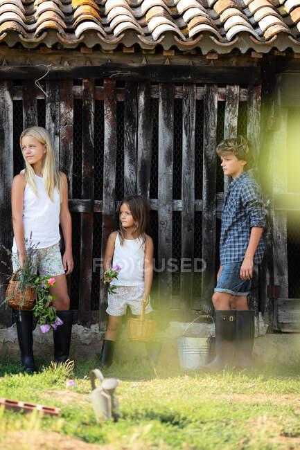 Ragazzo e due ragazze in abiti casual sorridenti e in piedi vicino grungy fienile di legno mentre trascorrono del tempo in fattoria — Foto stock