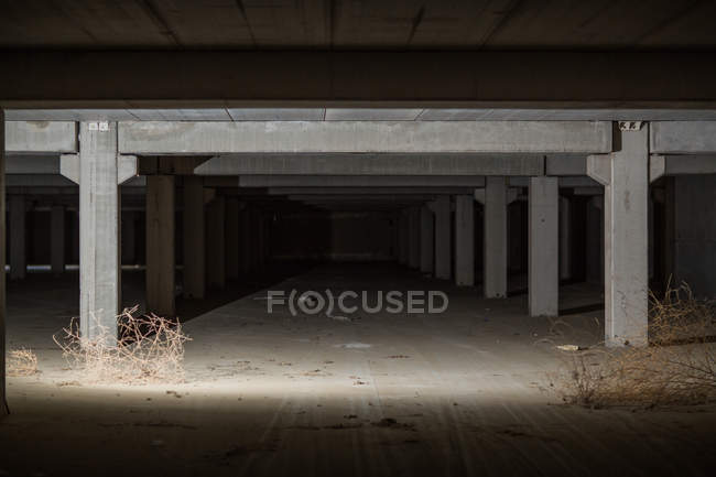 Inside abandoned concrete building with columns — Stock Photo
