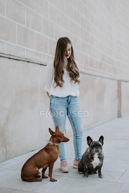 Femme moderne à la mode avec le bouledogue et le chien restant sur le trottoir de rue et souriant — Photo de stock