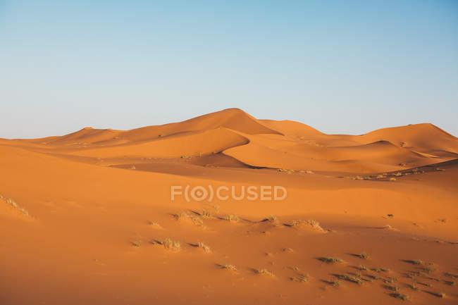 Red sandy dune of desert in Morocco — Stock Photo