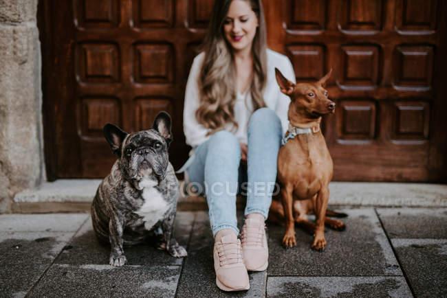 Femme moderne à la mode avec le bouledogue et le chien sur le trottoir de rue et se penchant sur la porte en bois — Photo de stock