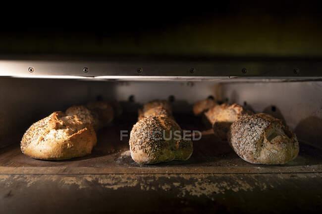 Panes de delicioso pan con corteza crujiente en horno caliente - foto de stock