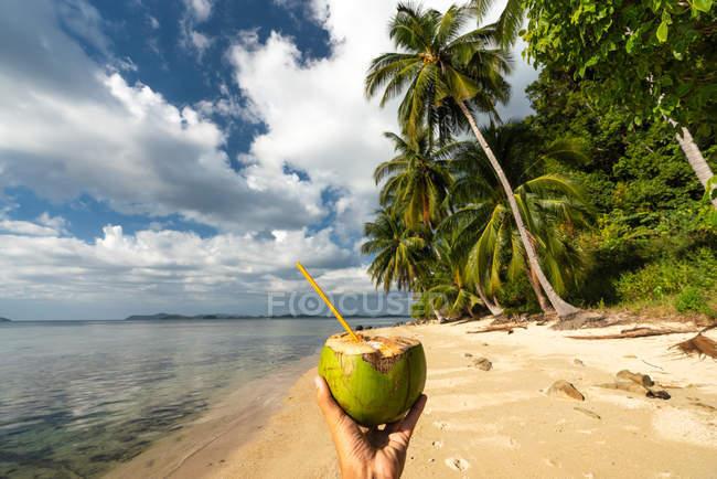 Рука человека, держащего кокосовый коктейль с соломой на живописном берегу моря с пальмами — стоковое фото
