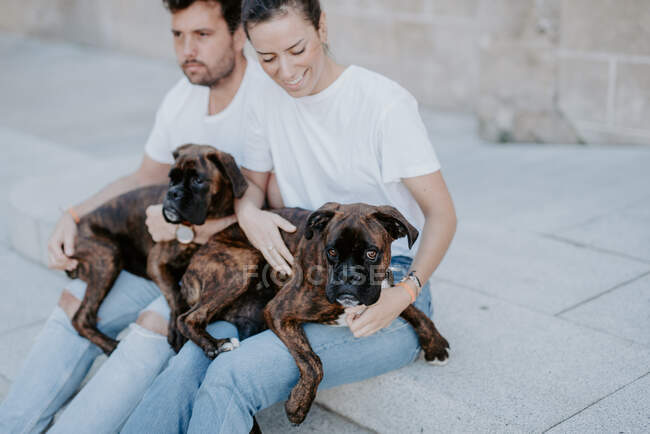 Young people smiling and sitting bonding with cute serious boxer dogs outside — Stock Photo