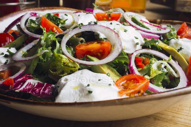 Овочевий салат з цибулевими зеленню і вершковим соусом подається на тарілку — стокове фото