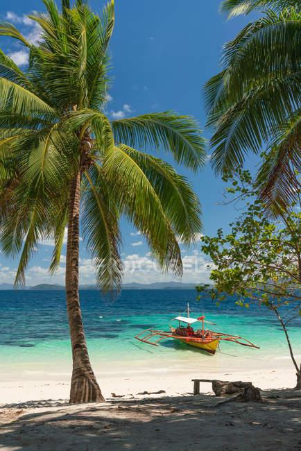Vue pittoresque du bord de mer sablonneux avec le bateau et le palmier — Photo de stock