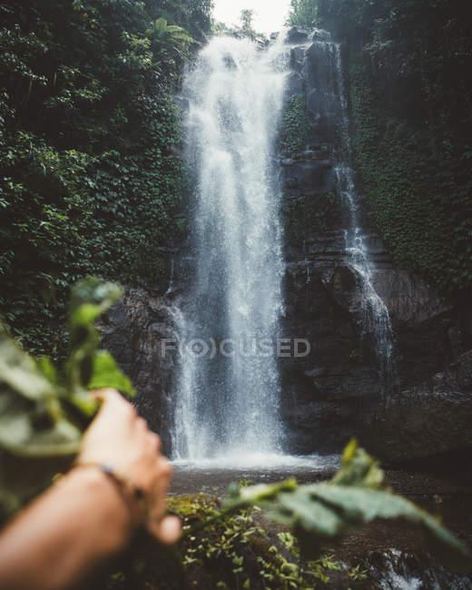 Mão do homem que descobre a cachoeira pitoresca no penhasco elevado em madeiras tropicais verdes, Bali — Fotografia de Stock