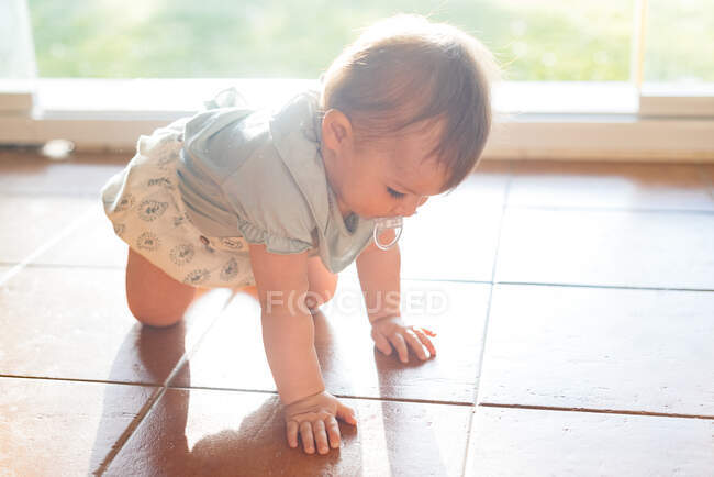 Charming plump babe with nipple in mouth exploring world crawling on floor in light day — Stock Photo