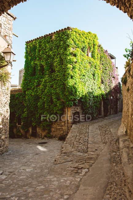 Vue village médiéval et bâtiment vue plante rampante — Photo de stock
