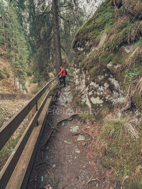Vista lateral del viajero fotografiando mientras camina por el sendero de la pintoresca zona de Dolomitas, Italia - foto de stock