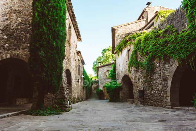 Vista pueblo medieval y edificios vista plantas rastreras - foto de stock