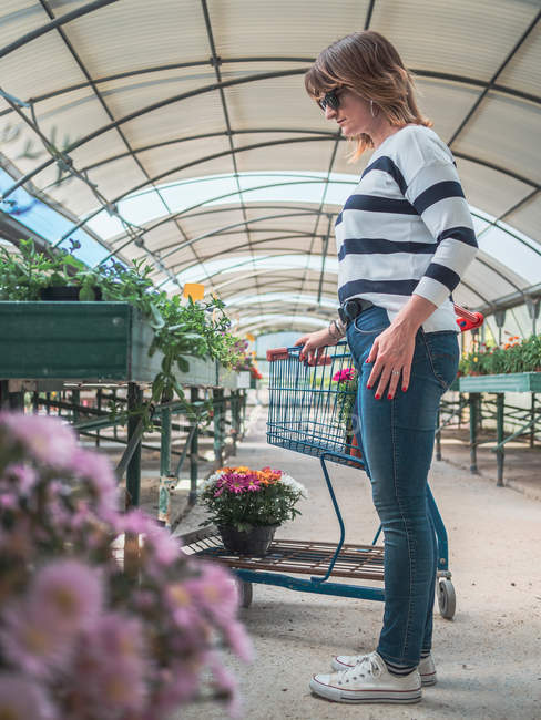 Woman choosing plants for garden on flower market — Stock Photo