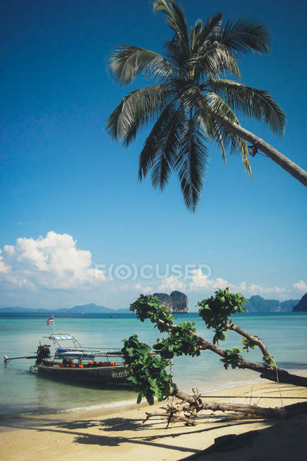 Picturesque landscape of Thailand beach with turquoise water and boat in shallow water against palm tree — Stock Photo