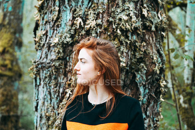 Beautiful young woman in casual sweatshirt waving with ginger colored hair against old tree, Scotland — Stock Photo