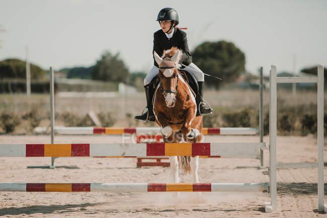 Подростковый жокей на лошади перепрыгивает через горизонтальные деревянные решетки во время езды по ипподрому — стоковое фото
