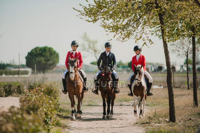 Ряд женщин-подростков, едущих верхом на лошадях, прогуливающихся по дороге под солнечным светом — стоковое фото