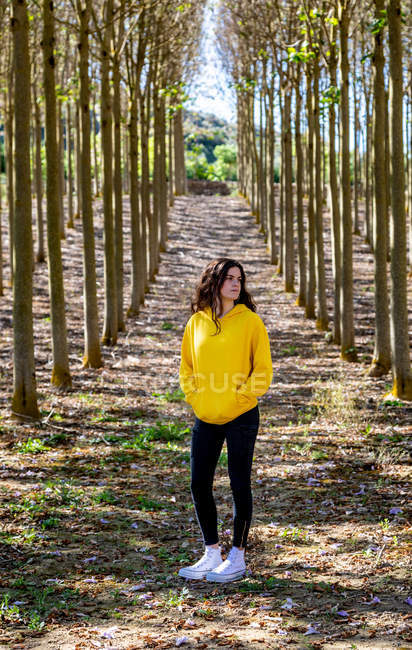 Young female in yellow sweatshirt standing in grove and looking away — Photo de stock