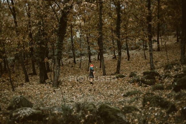 Анонімні жінки в масках паперових лисиць, що ходять в таємничих осінніх лісах у спеку. Концепція захисту диких тварин — стокове фото