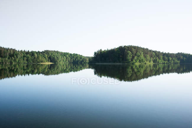 Scenic view of blue sky and large clear lake surrounded by dense forest — Stock Photo