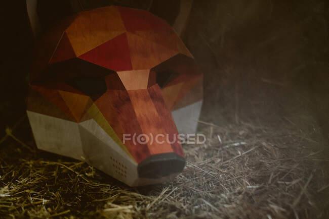 Маску лисиць на землі в таємничу осінню погоду. Концепція захисту диких тварин — стокове фото