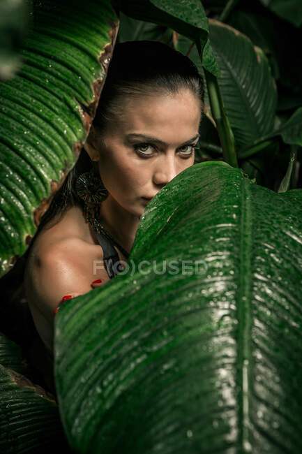 Languid woman resting in cool green leaves and looking at camera — Stock Photo