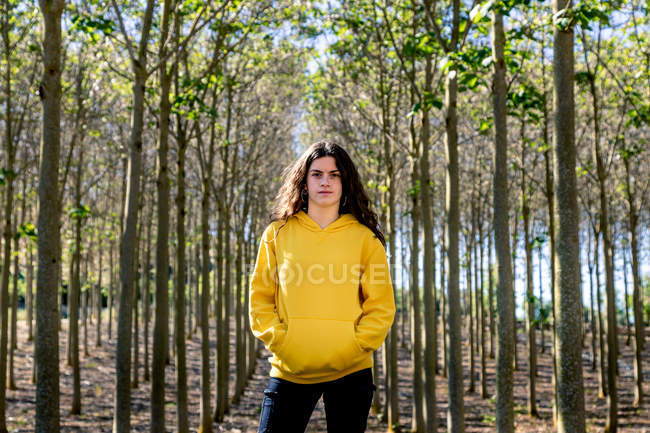 Portrait of young female with long hair in yellow sweatshirt standing on background of grove — Stock Photo