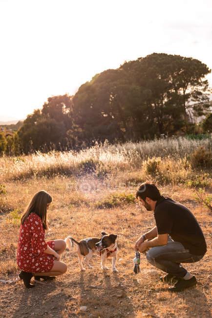 Lächelnfröhliches Paar sitzt zwischen hohen Gras und spaßt mit kleinem Hund auf dem Land — Stockfoto