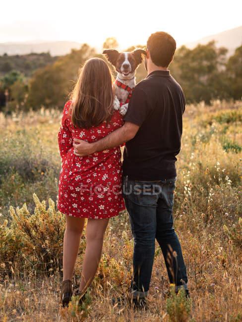 Visão traseira do casal irreconhecível segurando pouco cão entre grama alta no campo — Fotografia de Stock