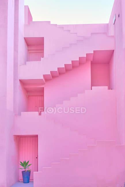 Розовое здание сложной геометрической формы и горшечное растение — стоковое фото