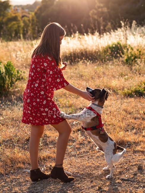 Jeune femme aux cheveux longs jouant chien mignon — Photo de stock