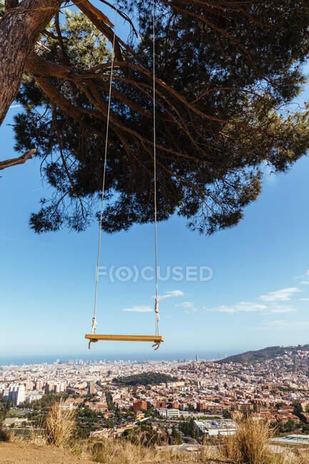 Качели привязаны к дереву с видом на город на заднем плане — стоковое фото