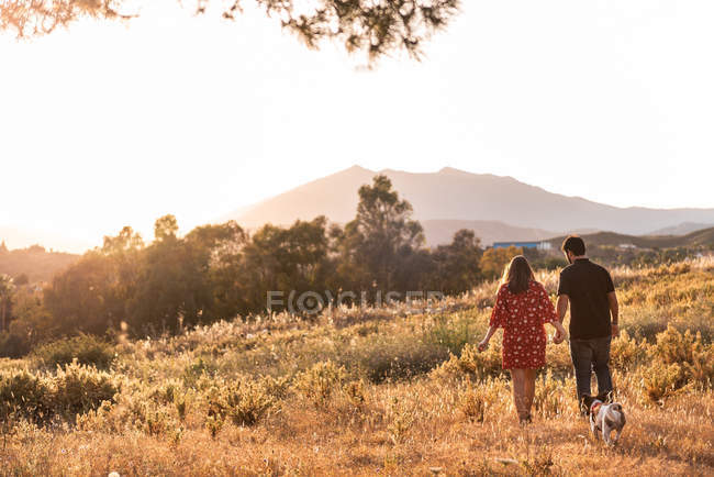 Cheerful couple walking with small friendly dog among yellow grass in park — Stock Photo