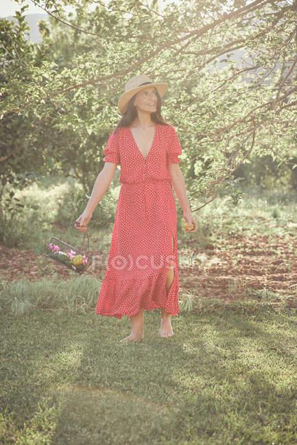 Jeune femme séduisante pieds nus en chapeau et robe rouge marchant dans le jardin vert avec panier de fruits dans la journée d'été — Photo de stock