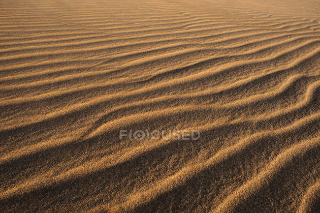 Picturesque landscape of textured rippled sandy beach of remote coastline in Tarifa, Spain — Stock Photo