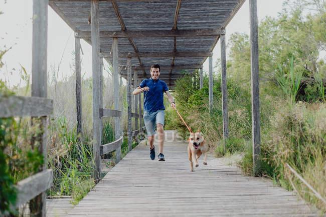 Alegre hombre casual con correa juguetón perro marrón mientras corre a lo largo de la construcción de madera en el campo rural - foto de stock