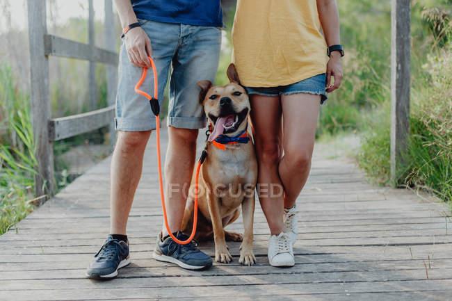 Glückliches Paar, das mit Hund auf dem Land steht — Stockfoto