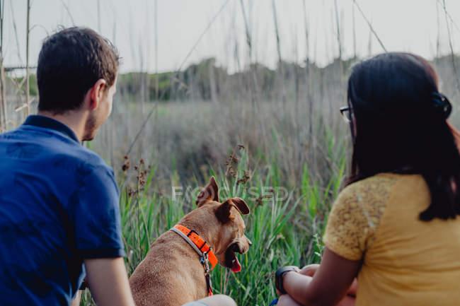 Веселая пара играет с собакой в сельской местности — стоковое фото