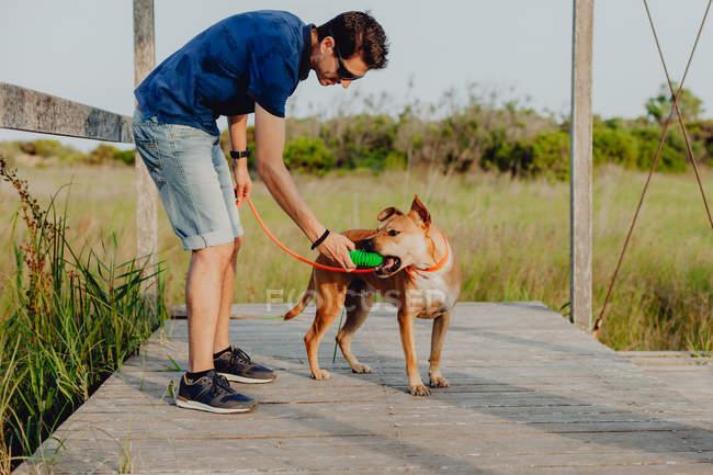 Vista lateral do homem casual alegre em óculos de sol mantendo na coleira cão marrom brincalhão enquanto joga com brinquedo de borracha — Fotografia de Stock