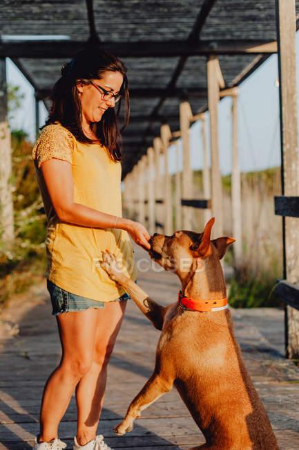 Joyeux casual jeune femme à lunettes jouant avec chien brun joyeux tout en se tenant debout sur la terrasse en bois — Photo de stock