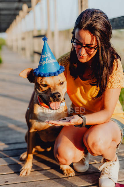 Cheerful casual young woman in glasses treating playful brown dog in birthday hat while sitting at wooden terrace — Stock Photo