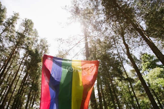 Вид на взрослую уверенную женщину в повседневной одежде с радужным флагом над головой в ветреный день — стоковое фото