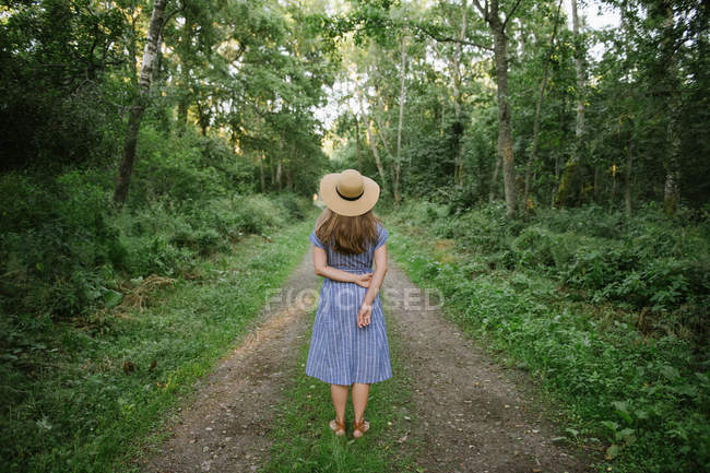 Back view of adult woman in straw hat and sundress standing along forest road between pines at sunny day — Stock Photo
